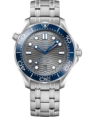 Omega Seamaster Diver 300m Montre Cadran Gris Homme 210.30.42.20.06.001