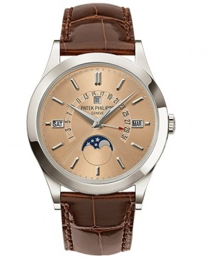 Patek Philippe Grand Complications Perpetual Calendar Platine Homme 5496P-014