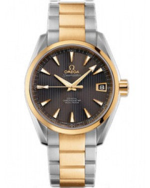 Omega Seamaster Aqua Terra Mid-Size Chronometer Automatique 38.5mm Hommes 231.20.39.21.06.002